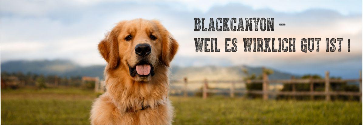 Banner-Hundefutter2